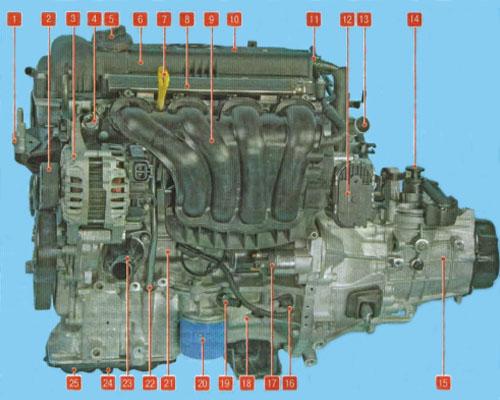 сколько клапанов в двигателе 1.6 киа рио